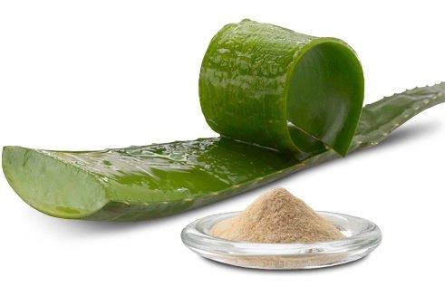Aloevera Powder Organic